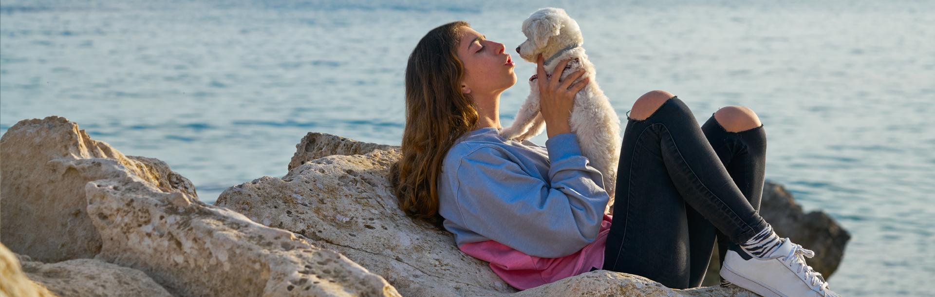L'estate con cani e gatti: come prendersene cura al meglio., Schesir