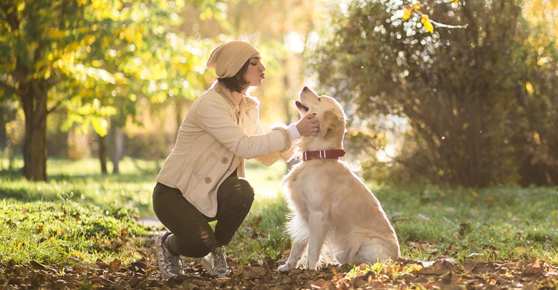 Cani e gatti in autunno, bisogni e consigli., Schesir
