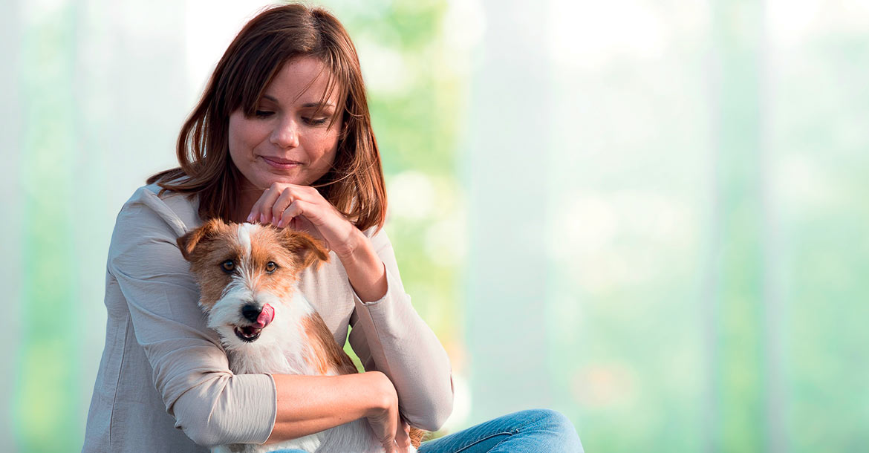 Da Schesir un menu dedicato ai cani di piccola taglia., Schesir