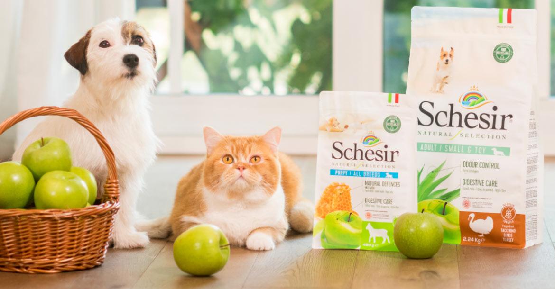 Natural Selection   la Nuova linea Schesir per cani e gatti con ingredienti naturali, Schesir