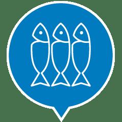 , Cibo umido per gatti adulti con pesce – Tonnetto con pesce azzurro lattina 140 g, Schesir - Alimenti Naturali Per Cani E Gatti