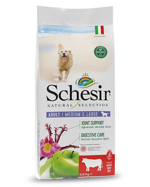 , Natural dry food for adult dogs – Medium & Large Rich in Beef 9.6 kg bag, Schesir - Natural Food For Dogs And Cats