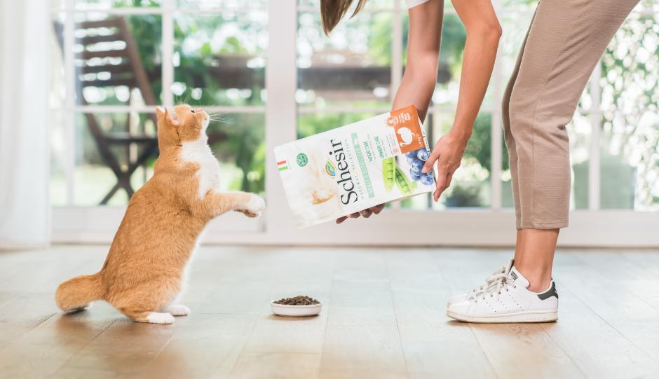Benefici vie urinarie gatto, Schesir
