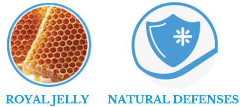 , NATURAL SELECTION: with 100% natural ingredients, Schesir - Natural Food For Dogs And Cats