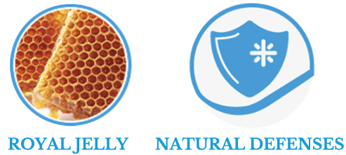 , Natural Selection: 100% natural dry food, Schesir - Natural Food For Dogs And Cats