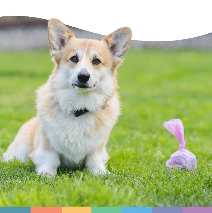 Programma Cacca-Bella, Schesir - Alimenti Naturali Per Cani E Gatti